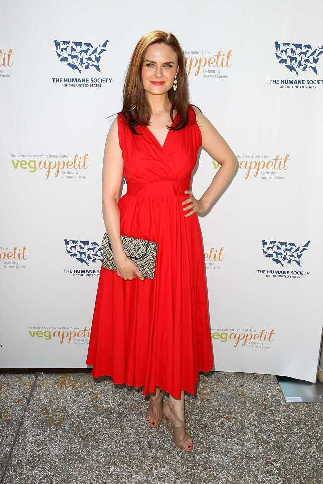 Emily Deschanel sexy red dress pics