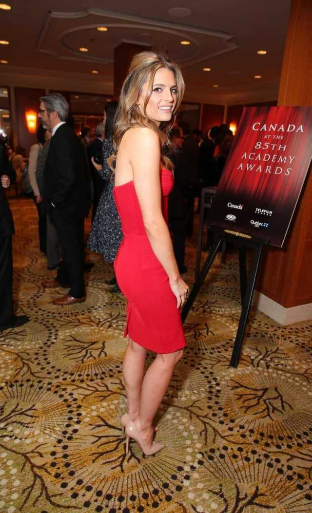 Stana Katic sexy side butt pics