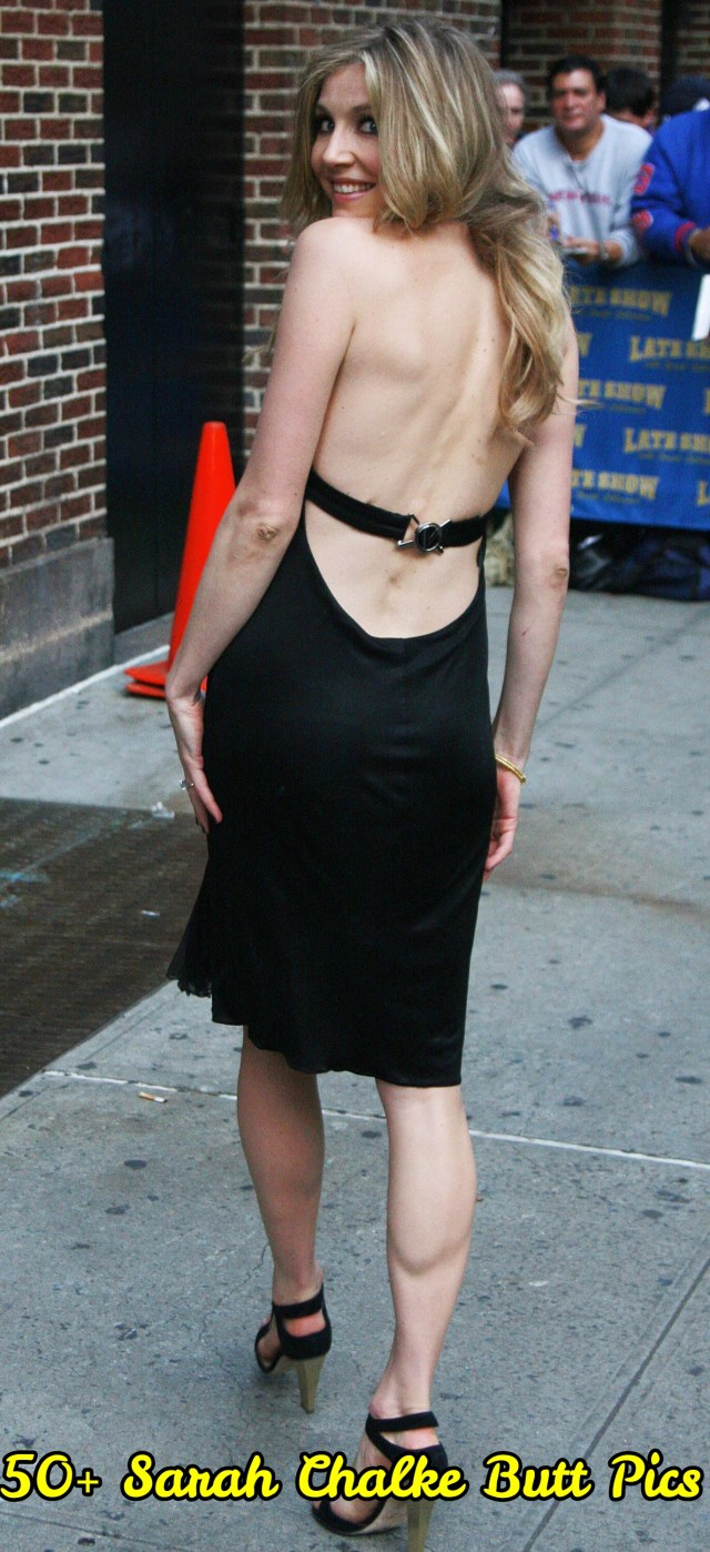 Sarah Chalke backless