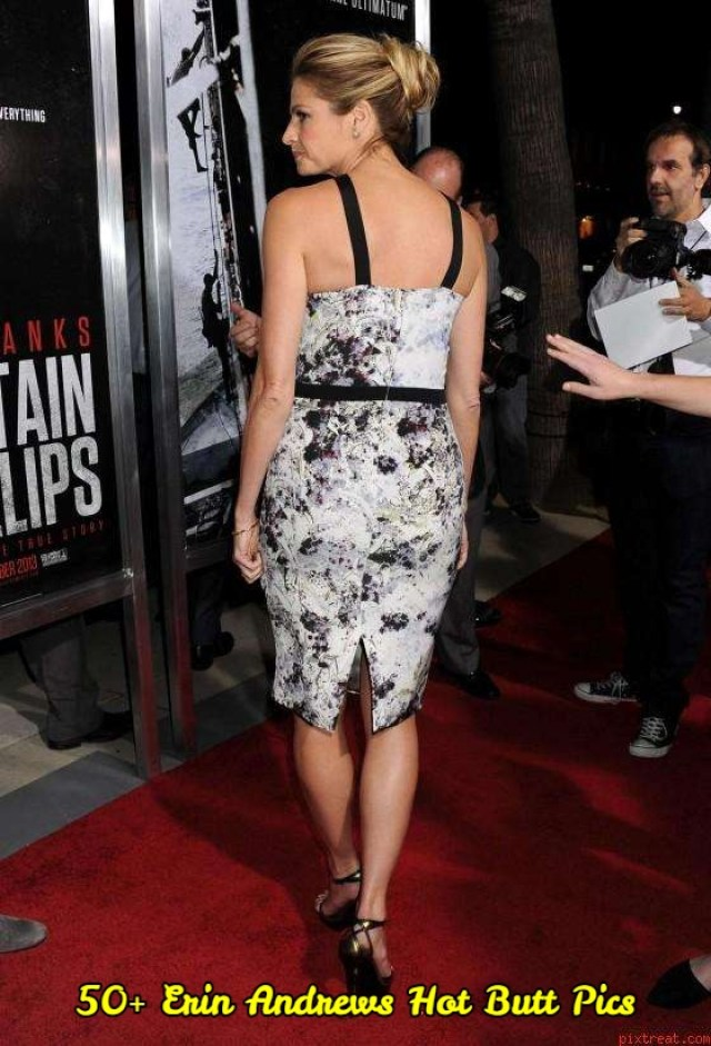 Erin Andrews hot pictures