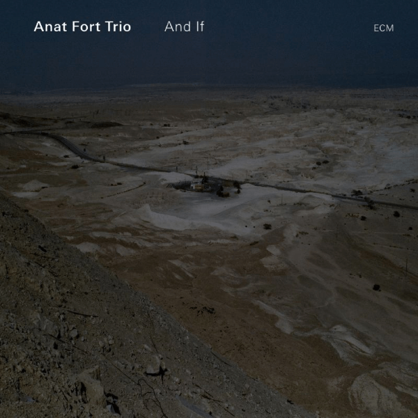 Anat Fort Trio And If