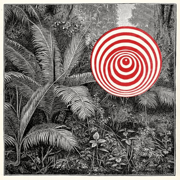 Tropiques - Into The Wild