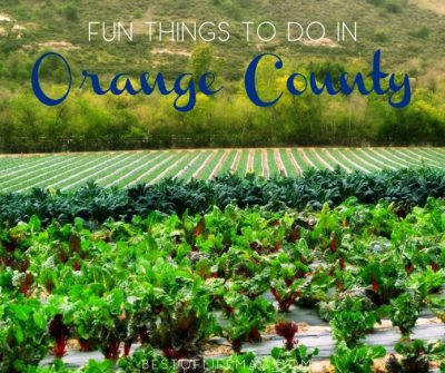 20 Things to Do in Orange County for Families - Best of ...