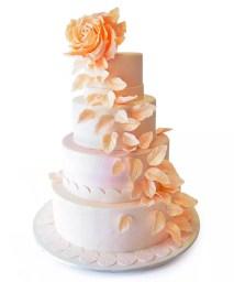NJ Weddings-Pink Cake Box-Rose Wedding Cake