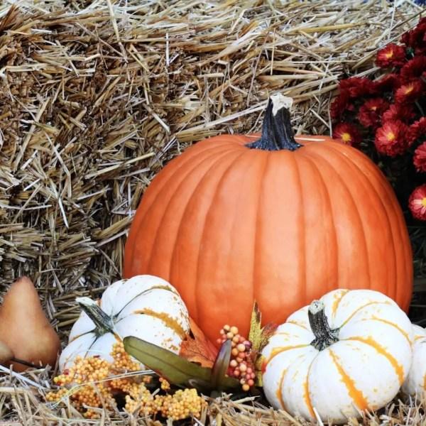 October Fairs