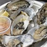 oysterfest5-500x500