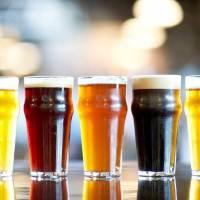 nj breweries, breweries
