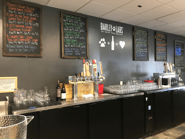 barley labs durham nc dog friendly spots