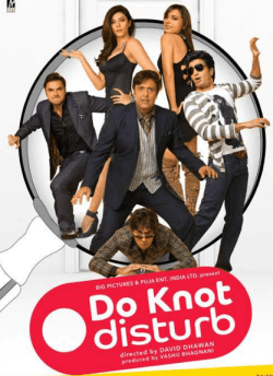 Do Knot Disturb movie poster