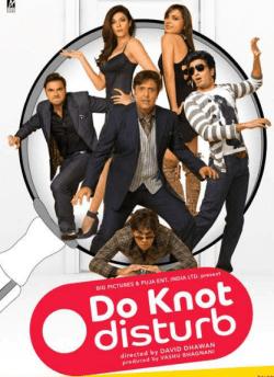 डू नॉट डिस्टर्ब movie poster