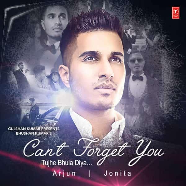 Tujhe Bhula Diya – Can't Forget You album artwork