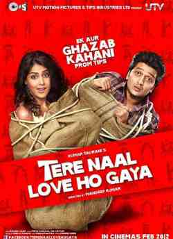 Tere Naal Love Ho Gaya movie poster