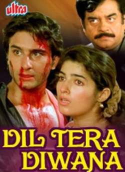 Dil Tera Diwana movie poster