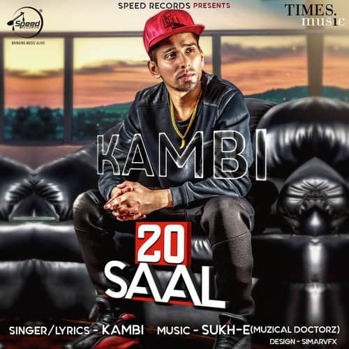 20 Saal album artwork