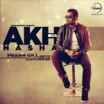Akh Da Nasha album artwork