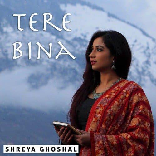 Tere Bina album artwork