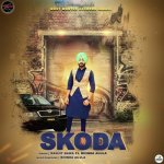 Skoda album artwork