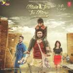 Main Tera Tu Meri album artwork