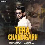 Tera Chandigarh album artwork