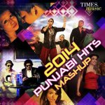 Punjabi Love Mashup album artwork