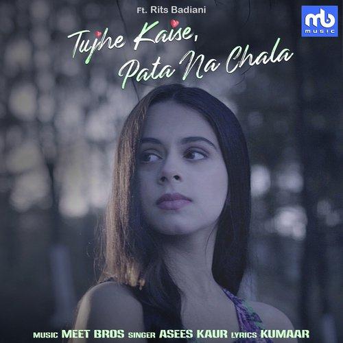 Tujhe kaise pata na chala album artwork