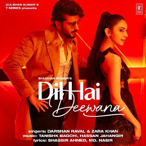 Dil Hai Deewana album artwork