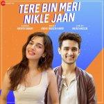 Tere Bin Meri Nikle Jaan album artwork
