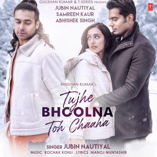 Tujhe bhoolna toh chaaha album artwork