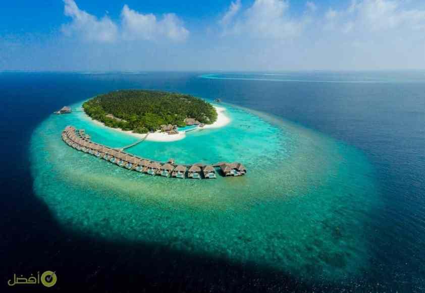 دوسيت تاني المالديف
