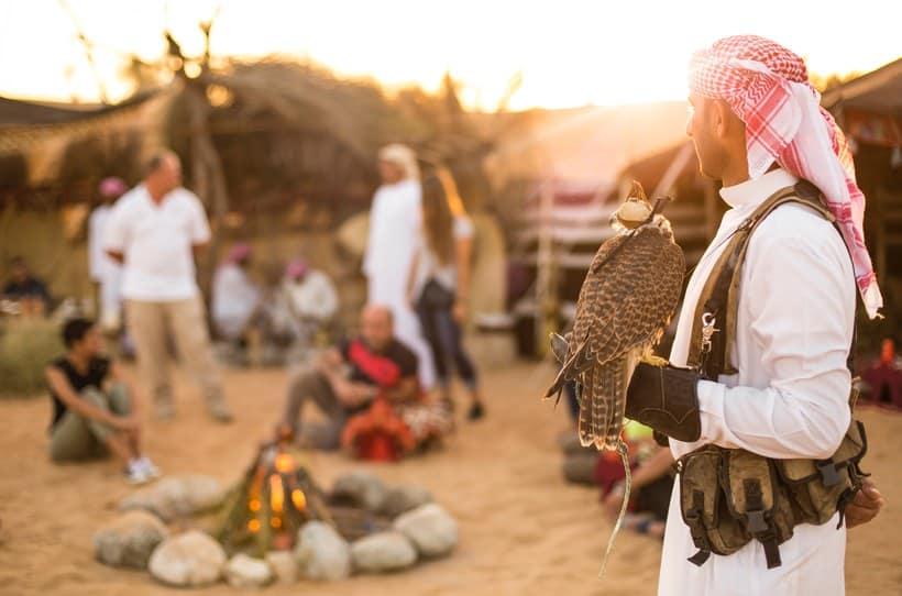 سفاري الحياة البدوية والبرية بواسطة Platinum Heritage افضل رحلات سفاري في دبي