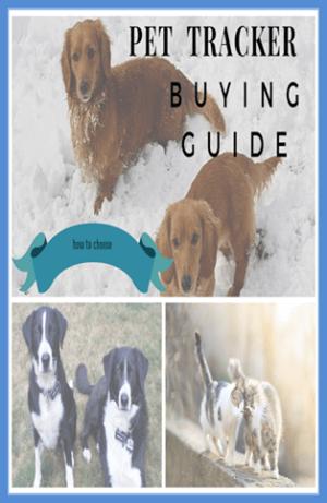 pet tracker buying guide