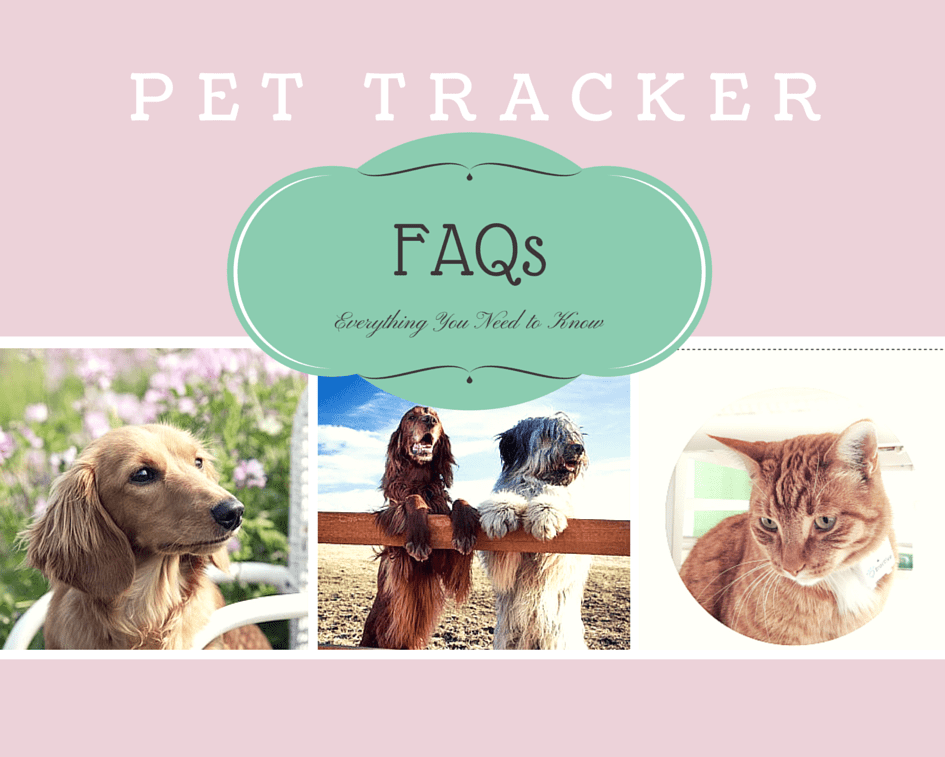 pet tracker frequently asked questions