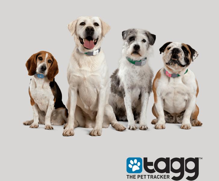 tagg pet tracker