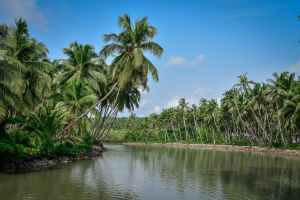 Places in Kerala to visit