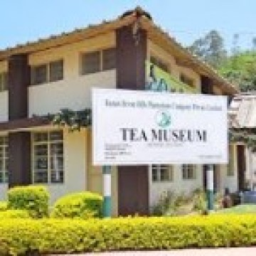 Tea Museum at Munnar (Image courtesy- commons.wikimedia.org)