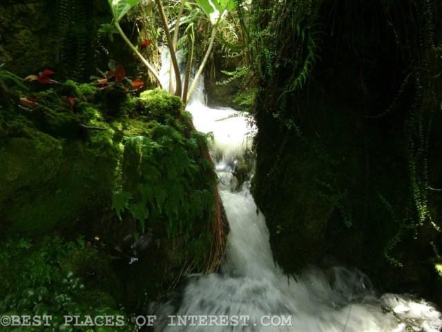 Gushing waterfall inside the botanical garden
