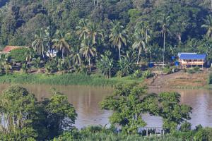 Bilit Sabah Sungai Kinabatangan, Malaysia