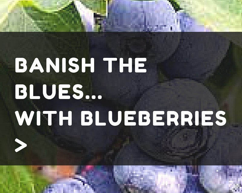 Banish the Blues… with Blueberries!