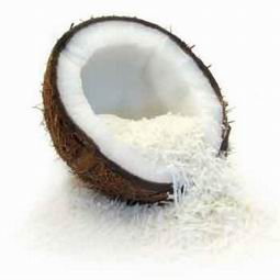 desiccated coconut recipes