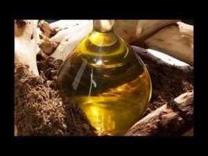 Pure Sandalwood Oil from Mysore Sandalwood Shop
