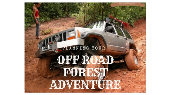 Planning your off Road Forest Adventure: Here is Your Checklist