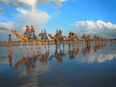 Camel Safari, adventure activities in Australia