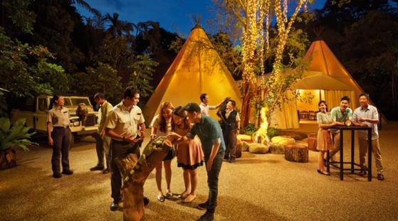 Singapore night safari, Singapore attractions