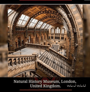 Natural history museum, London, breathtaking places in the world