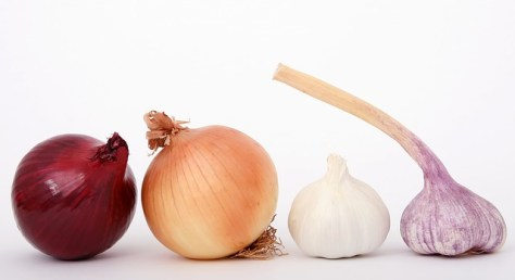 Onions and garlic are tasmic diet.
