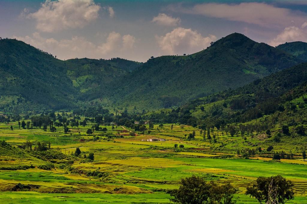Araku Valley Visakhapatnam - Timings, Entry Fees, Location, Facts Goibibo Araku Valley