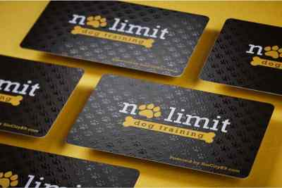 12-Mil.-Plastic-Business-Cards4