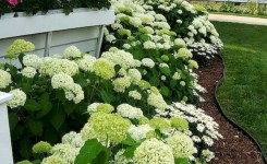 89 Best Choices Front Yard Landscaping Ideas On A Budget 27
