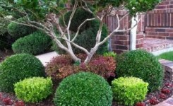 89 Best Choices Front Yard Landscaping Ideas On A Budget 68