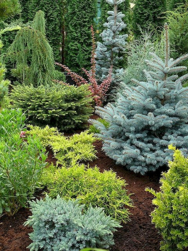 99 Small Front Yard Landscaping Ideas Low Maintenance 4394
